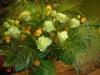 groene-rozen-met-oranje-accent